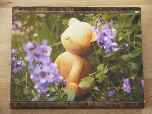 【ポストカード】癒し猫 小さなお花