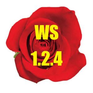 WSセット(割引)1,2,4