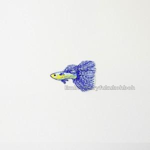 ベタ 熱帯魚 刺繍ワッペン 魚ワッペン