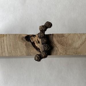 粒胡椒の連なりピンズ:S(真鍮製)