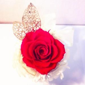 No.012 SHINO  Collection  『Love 』