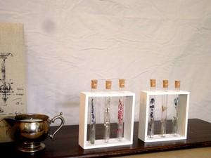 【受注生産】植物標本 Botanical Collection■フレームボックス入り試験管■3本セット 2タイプ展開