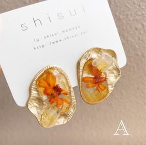 shell motif