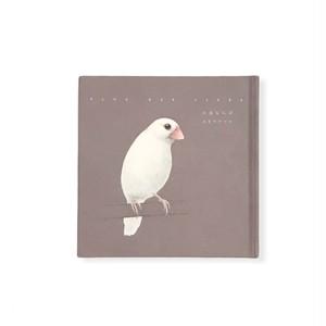 ユカワアツコ『小鳥ならば』