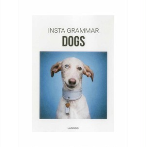 INSTA GRAMMAR DOGS − USED BOOK / 中古本 −