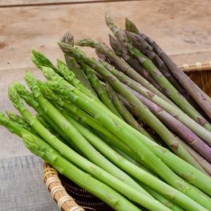 グリーンアスパラ&紫アスパラのセット1kg(送料無料)