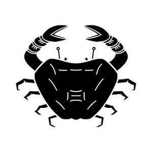 蟹 高解像度画像セット