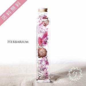 ハーバリウム hh-1906