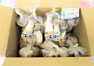 天使のエリンギ たっぷり12袋(約2.4kg)