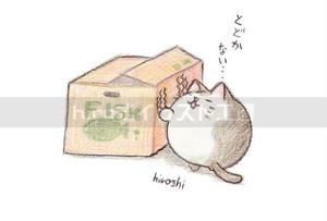 届かないネコ(箱)(ポストカード)