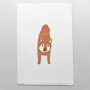 postcard (shibainu)