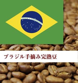 ブラジル手摘み完熟豆 100g