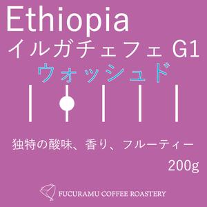 エチオピア イルガチェフェG1ウォッシュド【ハイロースト】200g