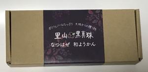 里山の黒真珠なつはぜ和ようかん5個入れ箱