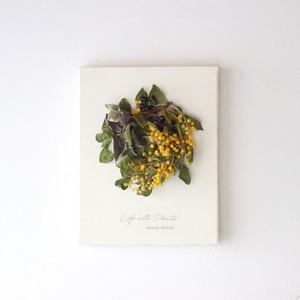 """植物キャンバスS """"真珠葉ミモザのリース""""【bdfa200022】ドライフラワー"""