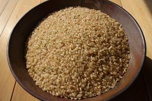 青森県産あきたこまち(農薬9割減・無化学肥料)玄米10キロ