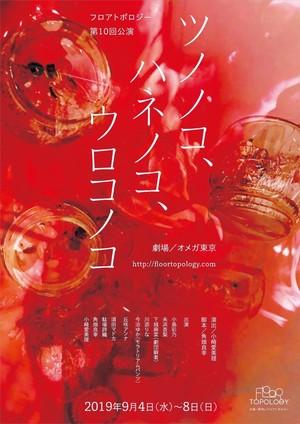 『ツノノコ、ハネノコ、ウロコノコ』DVD