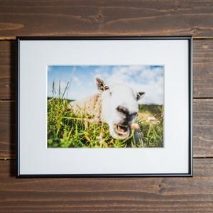 Photo Frame A4(羊)