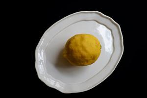 中田 雄一 / レモン皿