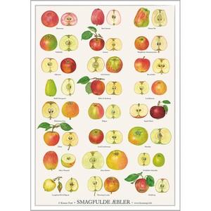 アート ポスター A4 サイズ KOUSTRUP & CO. - Tasty apples 美味しい林檎