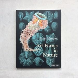 Art Forms in Nature / Ernst Haeckel