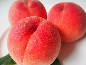 フルーツ貴公子が育てる 滴るおいしさ! 『伊東さんの樹上完熟桃3kg』 減農薬減化学肥料