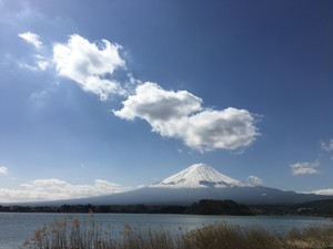 SPECTACULAR MT FUJI without Lunch