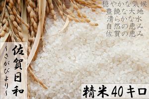 E577 【H29収穫米】みやき町産『さがびより(精米40kg)』8年連続特A受賞
