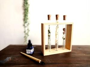 植物標本 Botanical Collection■フレームボックス入り試験管■3本セット