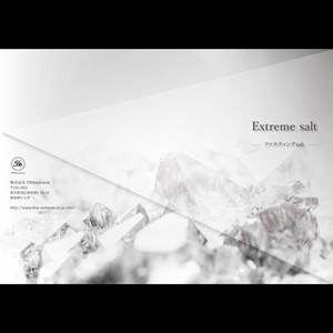認定DNAプランナー・アドバイザー専用 Extreme salt《パンフレット20部》