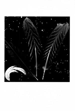 夜空の星物語 / 藤田一咲