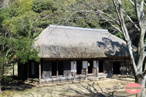 藁ぶき屋根の旧家~House of straw thatched roof~