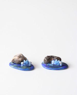 青いカニのお土産