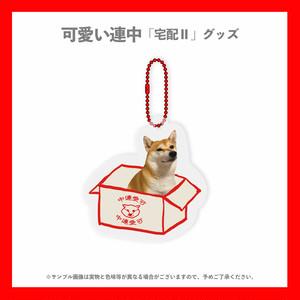 【可愛い連中】宅配Ⅱ/宅配凛ちゃんアクリルボールチェーン