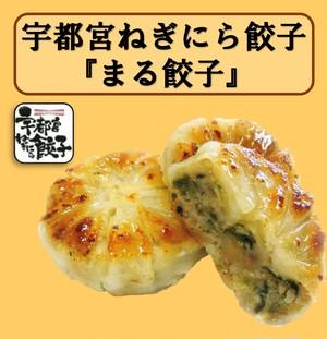 【100個】宇都宮ねぎにら餃子 まる餃子 冷凍
