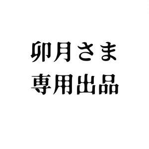 卯月さま専用/ラズライトルース