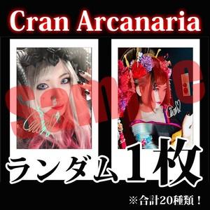 【チェキ・ランダム1枚】Cran Arcanaria