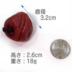 梅干し 食品サンプル マグネット