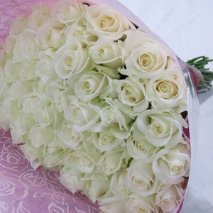 白いバラの花束50本(50cm)