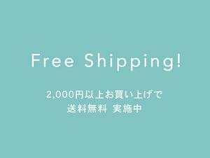 *2,000円以上のご注文で送料無料 実施中*