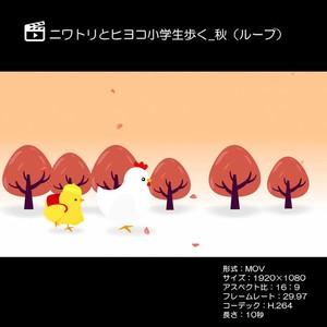 ニワトリとヒヨコ小学生歩く_秋(ループ)