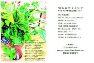 観葉植物ギャザリング寄せ植え体験レッスン<summer>