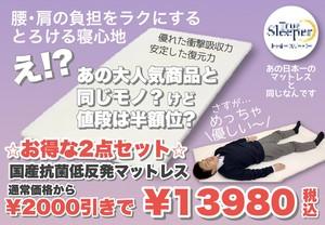 ⭐︎お得な2点セット⭐︎【日本製】抗菌低反発マットレス