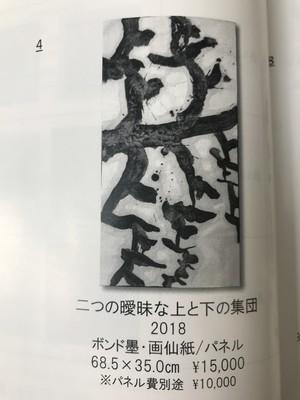 49DOUKAN YANO作品「二つの曖昧な上と下の集団」カタログ4