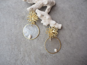 coral shell plate pierce/earrings