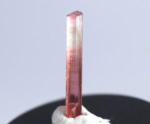 バイカラー ピンクトルマリン カリフォルニア産 自主採掘 0,7g T063