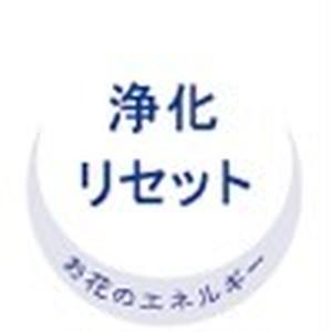 """take a shower""アロマピュアミスト(ボディミスト)"