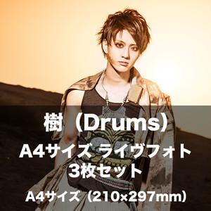 【A4】樹(Drums)ライヴフォト3枚セット