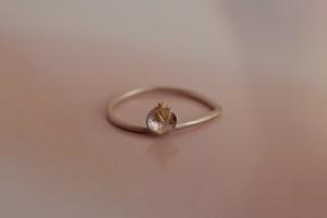 ring 06 - R - 06