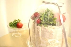 出産祝♥ニコール・リッチー愛用オムツ♥セブンスジェネレーションのおむつケーキ